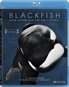 Blackfish blu art